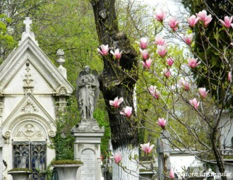 Cimitirul-Bellu-Bucuresti